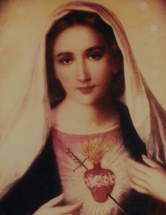 Mother Mary, Our Queen